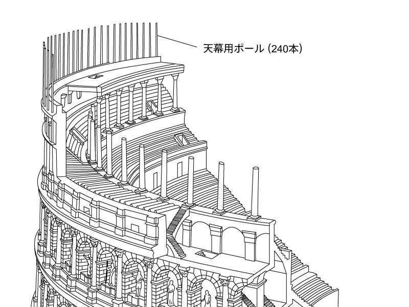 コロッセオ構造図 天幕用ポール