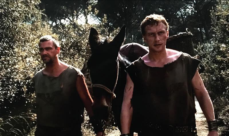プッロ(左)とヴォレヌス(右)の映像